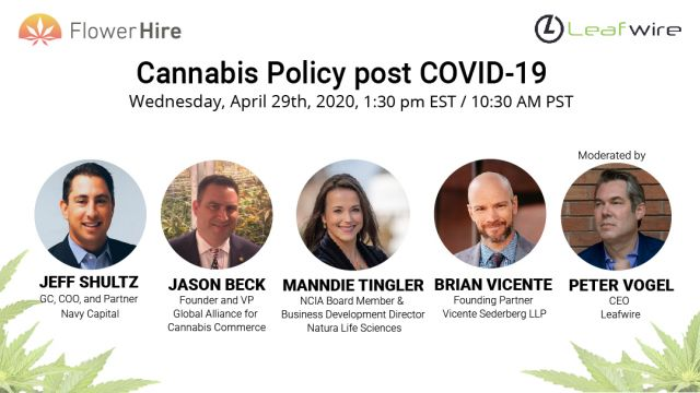 CannabisPOLICY_COVID19-01