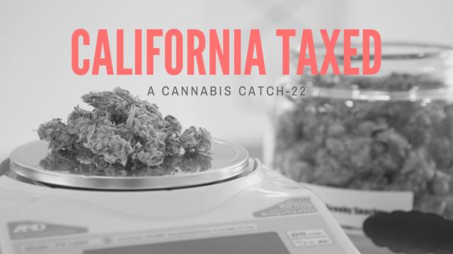 California Cannabis - Taxes (1)